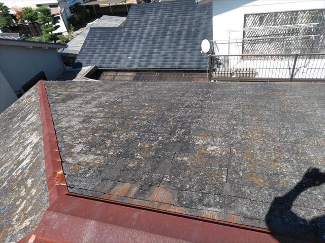 既存の屋根です