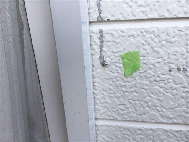 外壁の塗膜の剥がれ