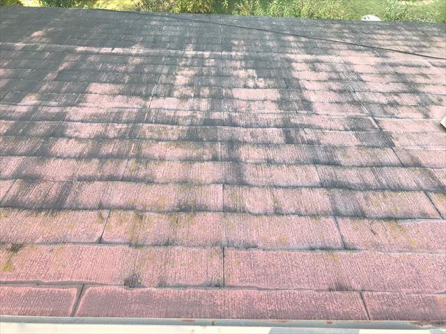 屋根の塗膜の劣化・剥がれ