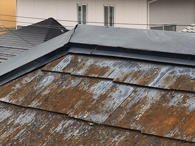 スレート屋根に大量のカビ発生