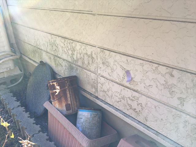 サイディング外壁にカビ発生