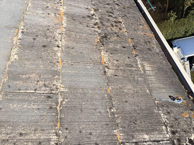 既存の屋根にカビ・細菌