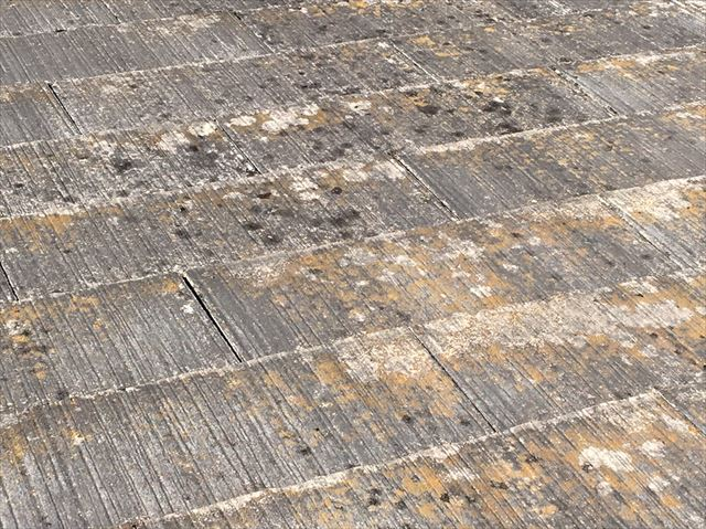 既存の屋根、塗膜の色褪せ